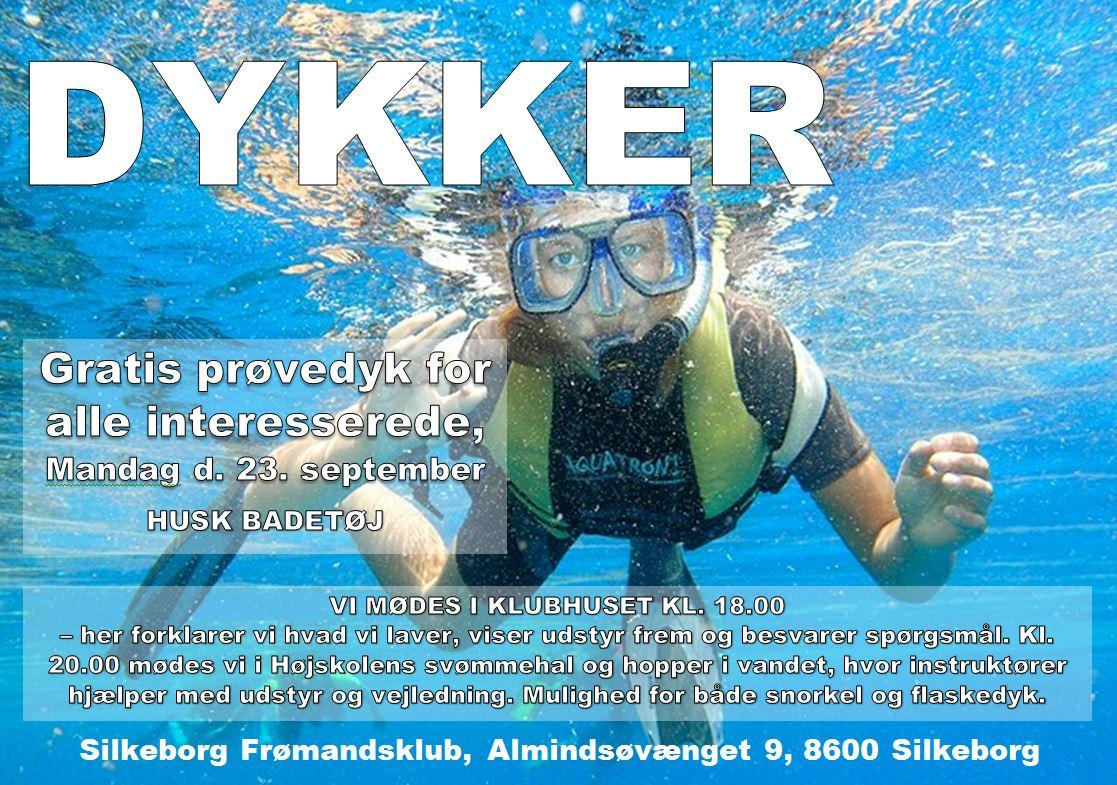 Dykker2013